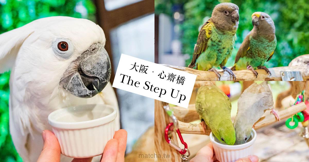 在大阪與鸚鵡互動|The Step Up Osaka。和可愛的鸚鵡共度一段快樂時光